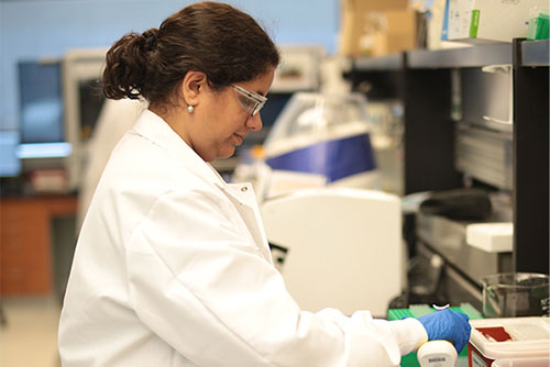 Researcher in the lab