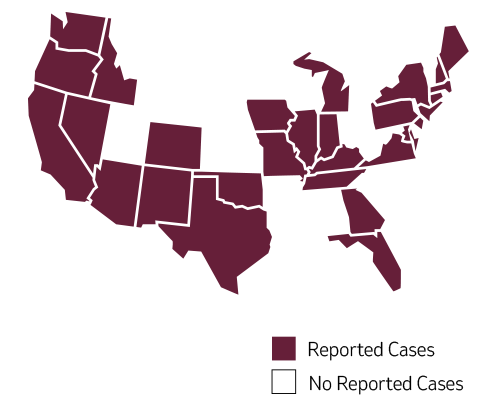 Map of measles cases in usa 2019